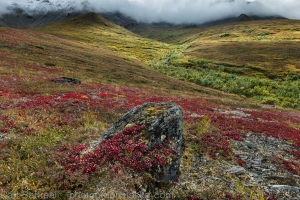 Mixed light and changing colors. Eastern Alaska Range