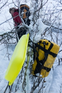 Sleds and alders=Fun!